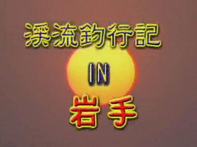 1996年大荒沢