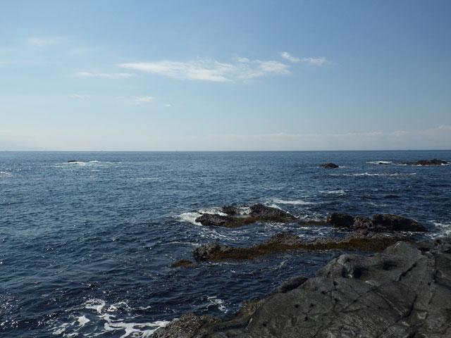城ヶ島 長津呂の磯