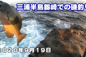 釼崎で磯釣り